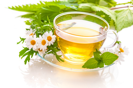 raw tea: Herbal tea with chamomile and  fresh mint leaves