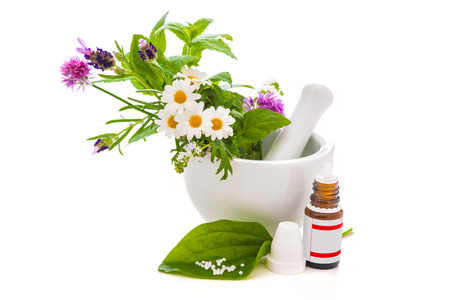 healing plant: Healing herbs and amortar. Alternative medicine concept