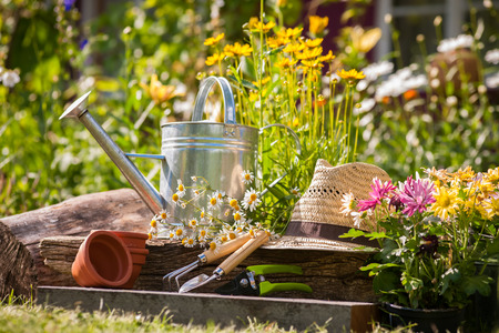 园艺工具和草帽在草地德赢体育上在花园里