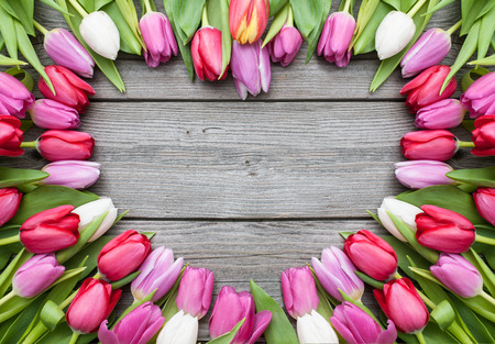 Frame of fresh tulips arranged on old wooden background Imagens