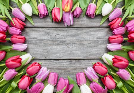 Marco de tulipanes frescos dispuestos en fondo de madera vieja Foto de archivo - 36370752