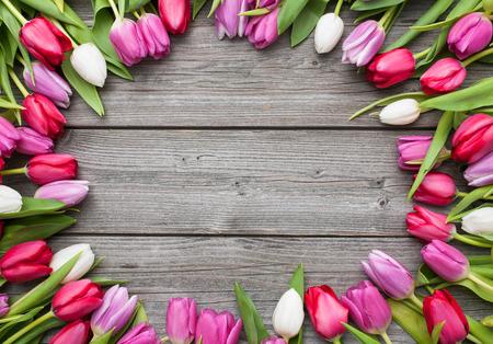 Marco de tulipanes frescos dispuestos en fondo de madera vieja