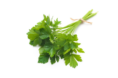 vegetables white background: Bunch of fresh parsley isolated on a white background Stock Photo