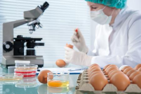 Experto en control de calidad en la inspección de los huevos de gallina en el laboratorio Foto de archivo - 36329868