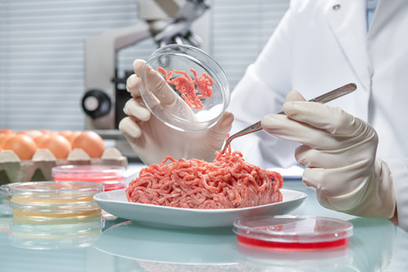 food research: Food quality control expert inspecting at meat specimen in the laboratory