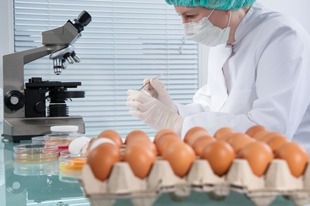 food science: Quality control expert inspecting at chicken eggs in the laboratory