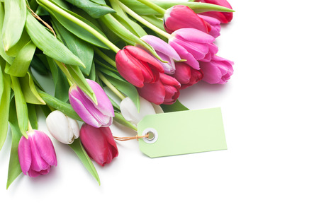 romantic flowers: Bouquet of tulips with an empty tag isolated on white background