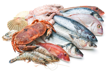 fishing catches: Fresh catch of fish and other seafood isolated on white background Stock Photo