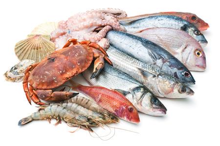 coger: Pescado fresco de pescado y otros productos del mar aislado en el fondo blanco