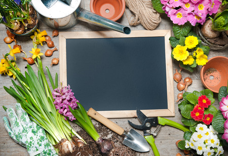 flower bulb: Gardening tools and flowers with a blank board for your text Stock Photo