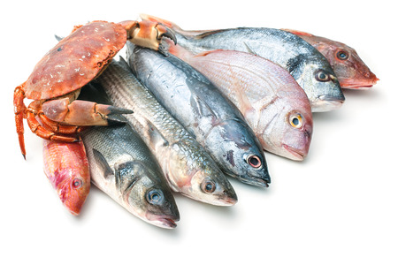 Fresh catch of fish and other seafood isolated on white background Archivio Fotografico