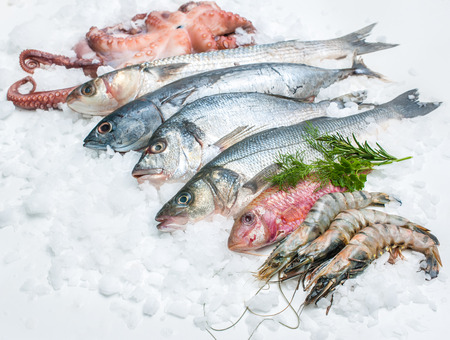 food fish: Seafood on ice at the fish market