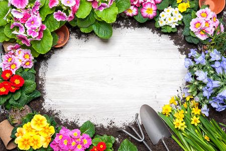 古い木製の背景上の春の花と園芸ツールのフレーム 写真素材
