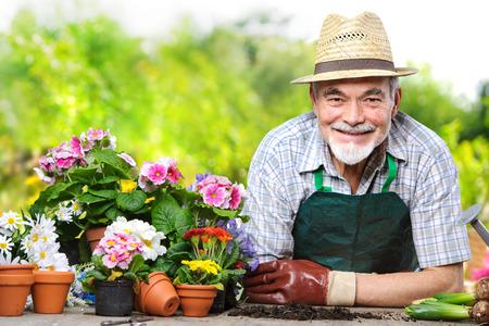 personas mirando: Retrato del hombre mayor en el jard�n de flores Foto de archivo