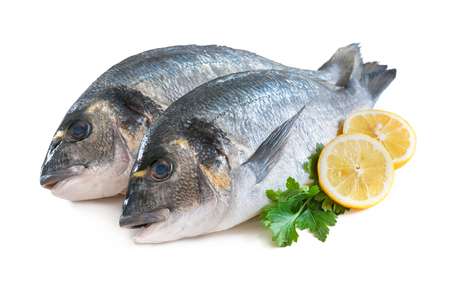 the dorada: Some of Gilthead sea breams isolated on white background