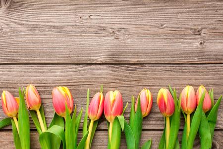 wood rustic: Tulipanes dispuestas sobre fondo de madera vieja Foto de archivo