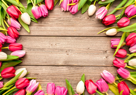 spring message: Frame of fresh tulips arranged on old wooden background Stock Photo