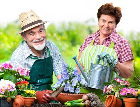 Portrait of senior couple in the flower garden photo