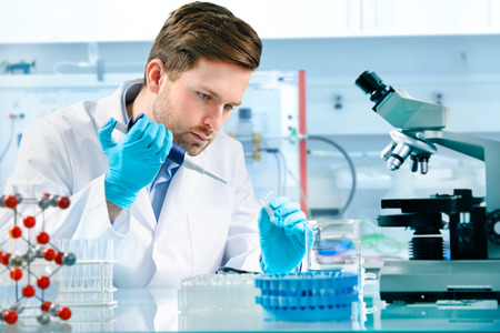 experiments: scientist working at the laboratory Stock Photo