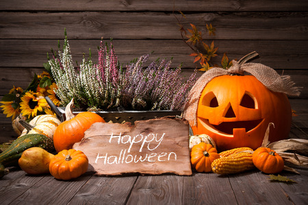 halloween symbol: Halloween still life with pumpkins and Halloween holiday text