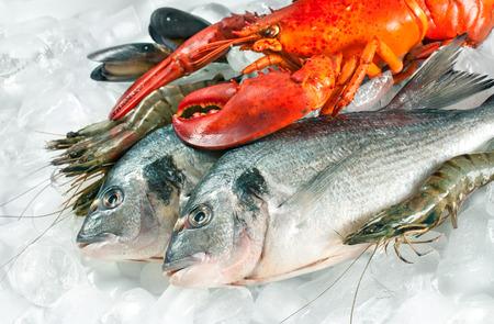 mariscos: Pescado fresco de los peces y mariscos en el hielo Foto de archivo