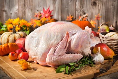 Preparing the thanksgiving turkey