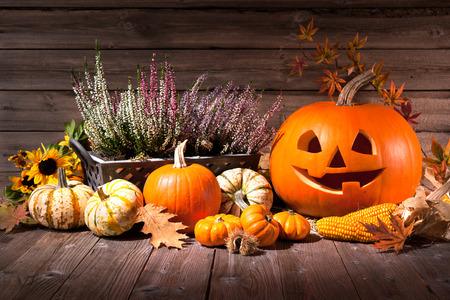 Autumn still life with Halloween pumpkins on old wooden background