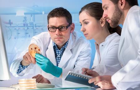 microbiologia: grupo de científicos que trabaja en el laboratorio Foto de archivo