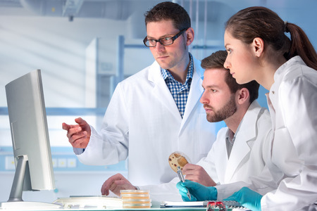 medical person: group of scientists working at the laboratory