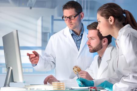 examenes de laboratorio: grupo de científicos que trabaja en el laboratorio Foto de archivo