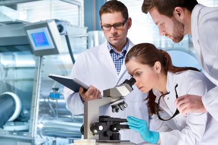 scientists: grupo de científicos que trabaja en el laboratorio Foto de archivo