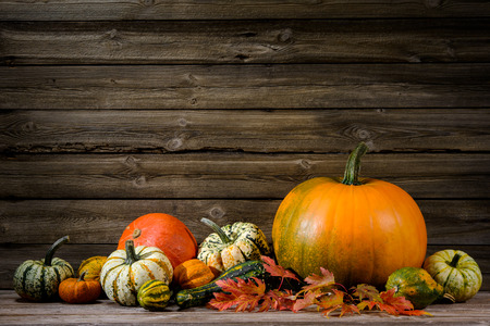Thanksgiving day autumnal still life with pumpkins on old wooden