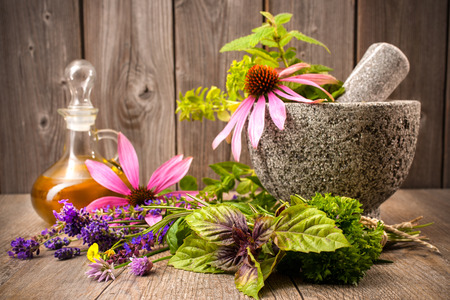 Healing herbs with mortar and bottle of essential oil on wood. Alternative medicine concept