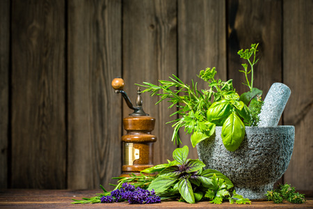 green herbs: Mortar with herbs on wooden table