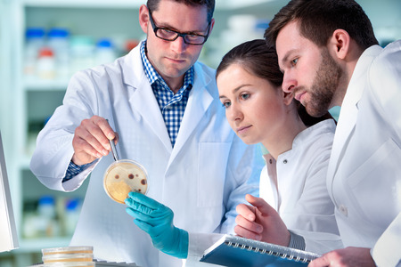 microbiologia: Grupo de científicos que trabajan en el laboratorio  Foto de archivo