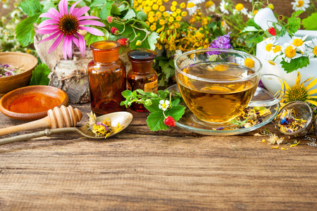 chamomile tea: Cup of herbal tea with wild flowers and various herbs