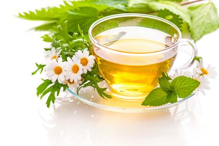 taza de te: T� de hierbas con manzanilla y hojas de menta fresca Foto de archivo