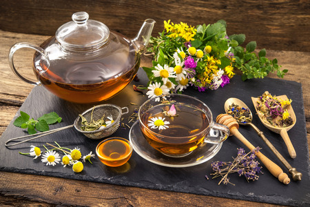 healing plant: Cup of herbal tea with honey