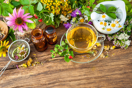 healing plant: Cup of herbal tea with wild flowers and various herbs