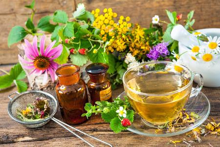 medicinal herb: Cup of herbal tea with wild flowers and various herbs