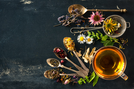 green herbs: Cup of herbal tea with wild flowers and various herbs