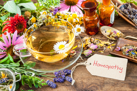 wild herbs: Cup of herbal tea with wild flowers and various herbs. Homeopathy Stock Photo