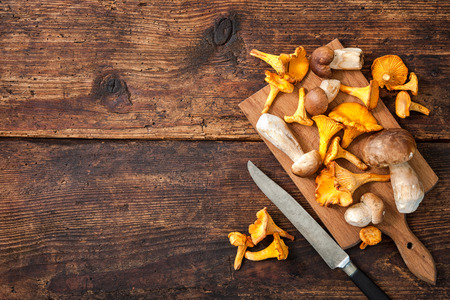 Porcini and chanterelle mushrooms on a cutting board with knife on a rustic background. Lots of copy space