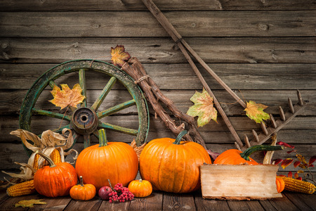 corn flower: Thanksgiving autumnal still life with pumpkins and old wooden wheel