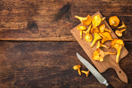 empty table: Cantharellus cibarius, chanterelle mushrooms on a cutting board with knife on a rustic background. Lots of copy space