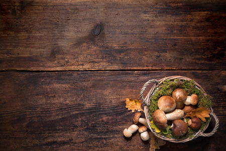 edible mushroom: Boletus mushrooms in a basket on wooden surface