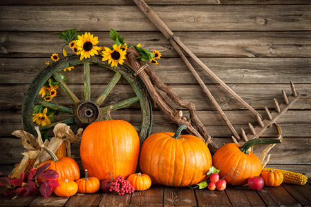 Thanksgiving autumnal still life with pumpkins and old wooden wheel Stok Fotoğraf - 46735194