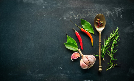 food additives: Herbs and spices with old metal spoon on slate background