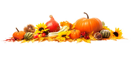 pumpkin border: Autumn decoration arranged with dry leaves, pumpkins and more, isolated on white, wide format Stock Photo