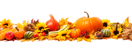Autumn decoration arranged with dry leaves, pumpkins and more, isolated on white, wide format Imagens